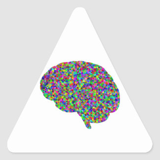 Rainbow Colored Brain Prismatic Art Triangle Sticker