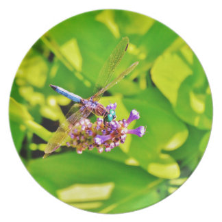 Rainbow colored Dragonfly  on a purple pink flower Party Plates