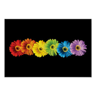 Rainbow Daisies Poster