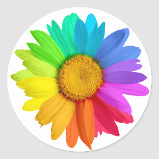 Rainbow Daisy Classic Round Sticker