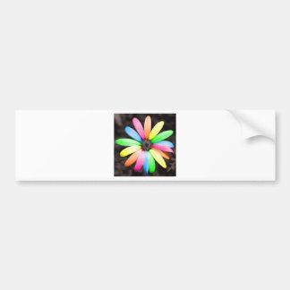 Rainbow daisy flower bumper sticker
