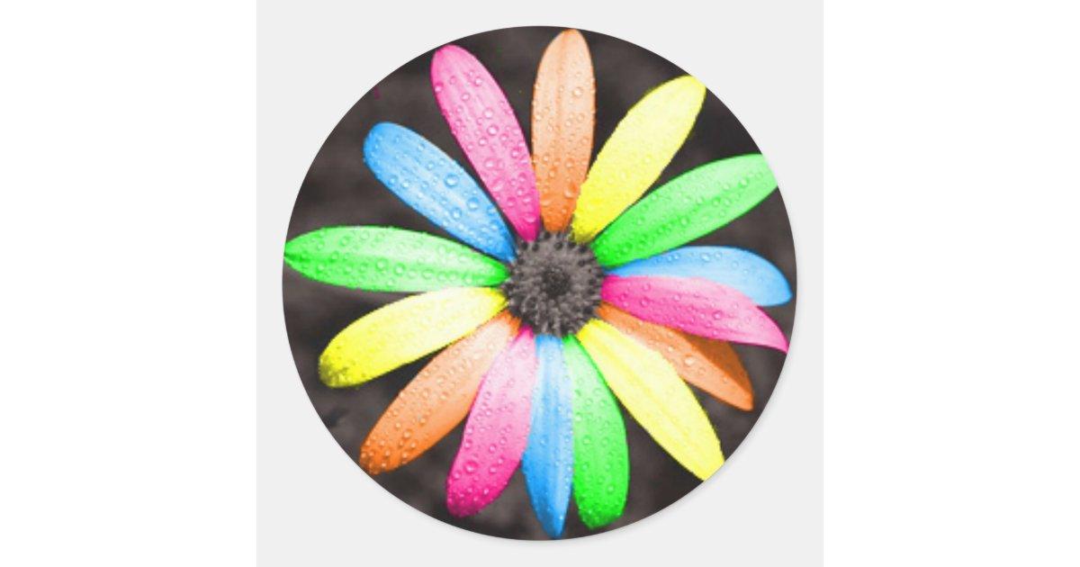 Rainbow Daisy Flower Classic Round Sticker