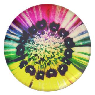 Rainbow Daisy Plate