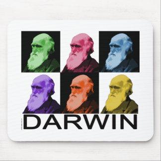 Rainbow Darwin Mouse Pad