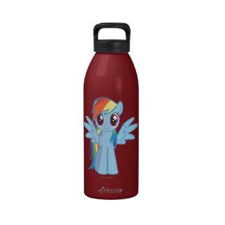 Rainbow Dash 2 Water Bottle
