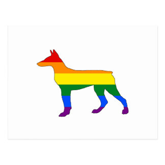 Rainbow Doberman Postcard