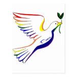 Rainbow Dove Postcard
