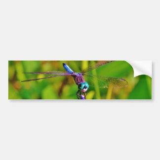 Rainbow Dragonfly and flower Bumper Sticker