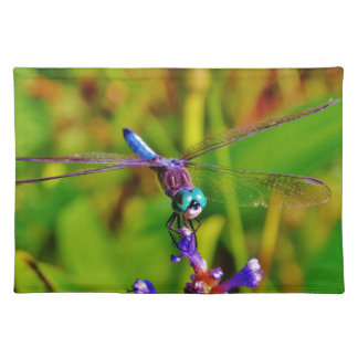Rainbow Dragonfly and flower Place Mats