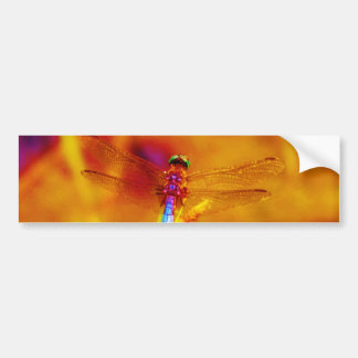 Rainbow Dragonfly on amber and fuschia Bumper Sticker