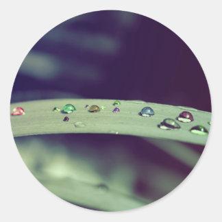 Rainbow Drops Stickers