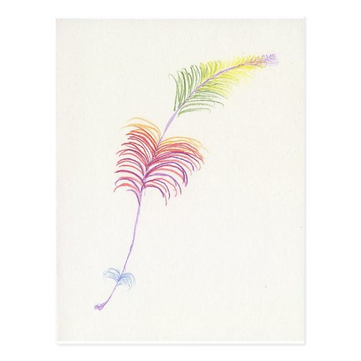 Rainbow Feather Drawing Postcard
