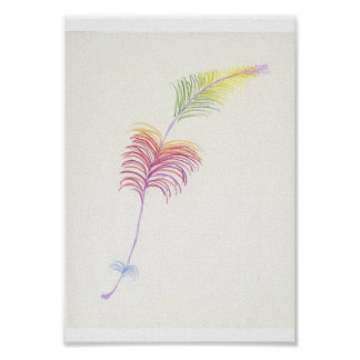 Rainbow Feather Drawing Poster