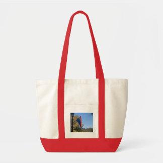 rainbow flag bag