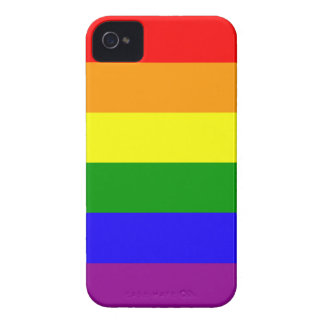 Rainbow flag case