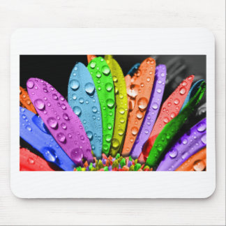 Rainbow flower pedals mouse pad