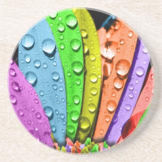 Rainbow flower pedals sandstone coaster