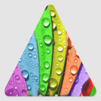 Rainbow flower pedals triangle sticker