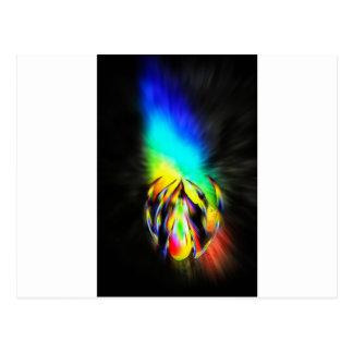 Rainbow-flowered Postcard