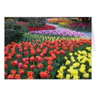 Rainbow Friend Garden Card