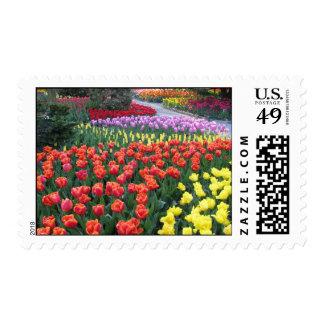 Rainbow Friend Garden Postage Stamps