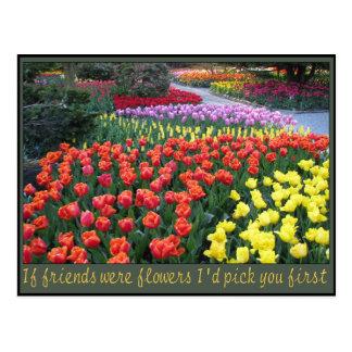 Rainbow Friend Garden Postcard
