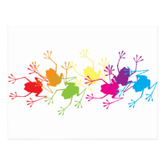 Rainbow Frogs Postcard
