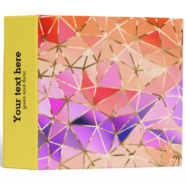 Professional Business Rainbow geometric pattern binder