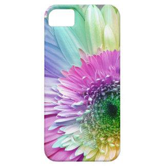 Rainbow Gerbera Daisy iPhone case iPhone 5 Covers