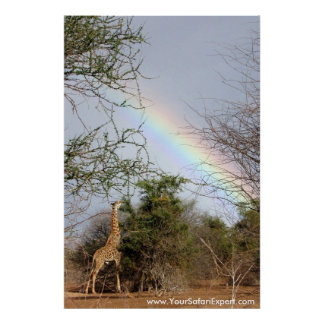 Rainbow Giraffe Poster Print up to 35x52 in