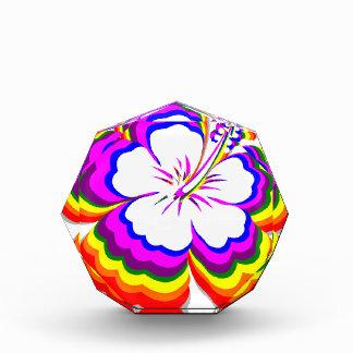 Rainbow Hibiscus design Awards