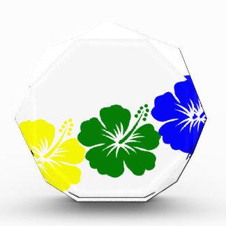 Rainbow hibiscus lei design awards