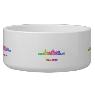 Rainbow Houston skyline Bowl