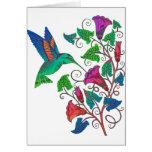 Rainbow Hummingbird Greeting Card