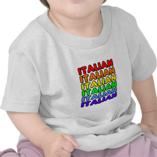 Rainbow Italian Tee Shirt