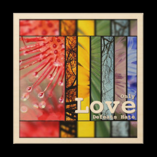 Rainbow LGBT Pride Symbol Nature Love Defeats Hate Wood Wall Decor