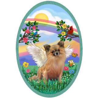 Rainbow Life - Long Haired Chihuahua Photo Cut Out