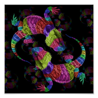 Rainbow Lizards Poster