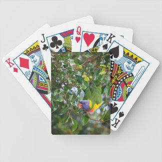 Rainbow Lorikeet Bicycle Playing Cards