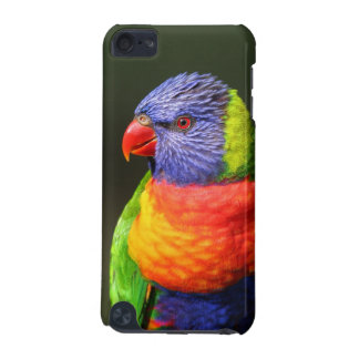 Rainbow Lorikeet iPod Touch 5G Cover