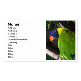Rainbow Lorikeet Colourful parrot photograph Business Card