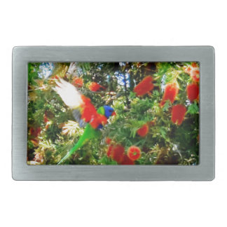 RAINBOW LORIKEET IN FLIGHT RURAL AUSTRALIA RECTANGULAR BELT BUCKLE