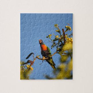 RAINBOW LORIKEET IN TREE AUSTRALIA JIGSAW PUZZLE