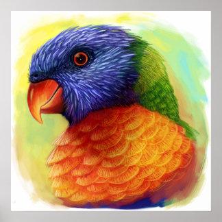 Rainbow lorikeet realistic painting poster