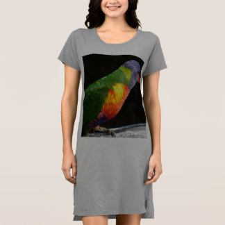 Rainbow Lorikeet T-shirt Dress / Nightie