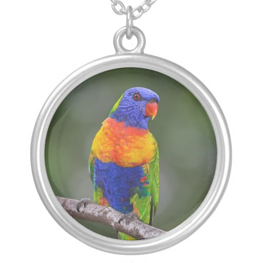 Rainbow Lorikeet Trichoglossus Haematodus Parrot Personalized Necklace