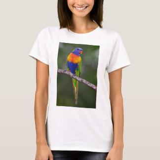 Rainbow Lorikeet Trichoglossus Haematodus Parrot T-Shirt