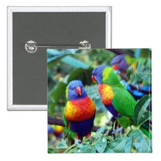 Rainbow Lorikeets Pinback Button