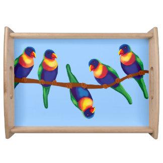 Rainbow lorikeets serving tray