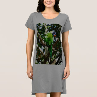 Rainbow Lorikeets T-shirt Dress / Nightie